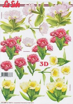 Le Suh Cut out sheet flowers 777 395 - Knutselparade D Flowers, Paper Flowers, Scrapbook Cards, Scrapbooking, Kirigami, 3d Sheets, Christmas Swags, Parchment Craft, Printable Stickers