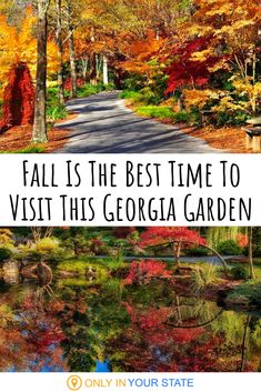 Gibbs Gardens in Georgia is beautiful all year but we love it in the fall. You'll find the best foliage and colorful Japanese Maple Trees. Don't miss their special event celebrating the changing leaves. Best Places To Travel, Places To See, Easy Family Meals, Family Recipes, Sea To Shining Sea, Us Road Trip, Autumn Garden, Future Travel, Vegan Recipes Easy