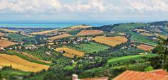 Fermo, Marche, Italy - countryside, Marche landscape- Photo by Gianni Del Bufalo bygdb Attribution-ShareAlike 2.0 (CC BY-SA 2.0)