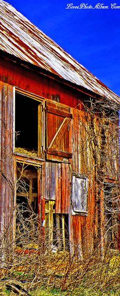 Barn Doors & Vines