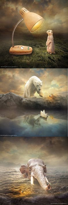 Amazing Photo Manipulations by Even Liu - #photomanipulation