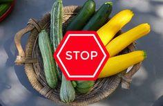 Zucchinis sind lecker & gesund. Baut man Zucchinis im Garten an, muss man einige Punkte beachten, um eine Vergiftung zu vermeiden. Wir zeigen welche.