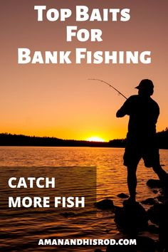 Here's a list of the best bank to help you catch more Also in the article I will give you some of my very own and to use these baits. Don't get skunked your next time fishing, let this article help fill your stringer. Trout Fishing Tips, Walleye Fishing, Kayak Fishing, Fishing Tricks, Fishing Rods, Carp Fishing, Fishing Tackle, Fishing Stuff, Fishing Guide