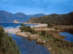 Corsica - Plages de Haute Corse - La plage du Loto de Saint Florent (également appelée Plage du Lodo, du Lodu ou du Lotu) se situe dans le désert des Agriates.