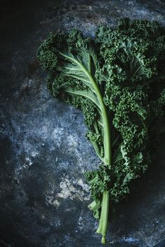 Kale » What's your favorite kale recipe?