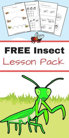 Free Insect Homeschool Unit - Ew! Creepy and crawly, this free insect homeschool unit is perfect for creeping your homeschool students out! (In a good way of course!)