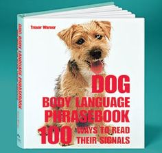 """Dog Body Language book teaches you how to recognize and interpret your pet's non-verbal signals and thoughts. Actions speak louder than words when all you can say is """"woof""""! Easy-to-use reference guide examines the psychology and meaning of over 100 common canine behaviors. Hundreds of color photos. 208 pages. Hardcover."""
