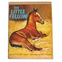 The Little Fellow by Marguerite Henry  horse by MeganLeoneVintage