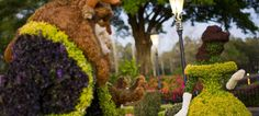 Disney's Epcot International Flower and Garden Festival--beautiful topiaries!!