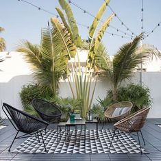 Modern Garden: No Green Fingers Required Garden design ideas- how to create an outdoor room. Tropical patio in Dubai.Garden design ideas- how to create an outdoor room. Tropical patio in Dubai. Modern Patio Design, Rooftop Design, Small Garden Design, Fence Design, Terrace Design, Patio Tropical, Modern Tropical, Tropical Outdoor Decor, Tropical Interior