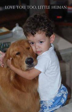 golden retriever and his sweet little buddy ♥♥