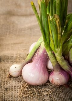 Onions - Fruits and vegetables are the healthiest food there so stan included in the Mediterranean diet