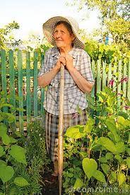 Gardening Clothing Co Inspiration