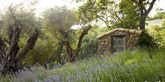 This Woman Recreated Provence in Her Own Backyard Potting Shed in Lavender Field Garden Gazebo, Garden Paths, Outdoor Sheds, Outdoor Rooms, Outdoor Living, Provence, French Bistro Chairs, Hand Hewn Beams, Shed Building Plans