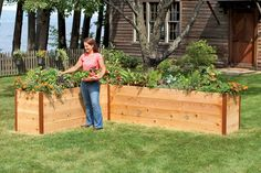 A Pinner said: A 'High Rise' raised bed garden.  Easy to pick.  Easy to weed! Love these! we have 2 of these that measure 3'x 9/10' and I love them they also help keep some of the critters out too :-)