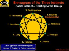 ENNEAGRAM - Understanding Unconscious Strategies of People, Organizations, and Cultures (Your first-ever Business e-Coach)