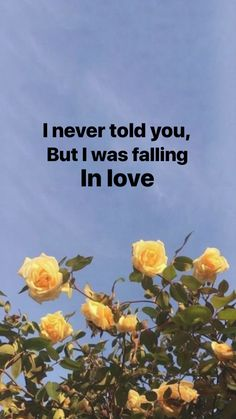 Was *I'm still falling in love with you. But you never tell me when you'll come here.