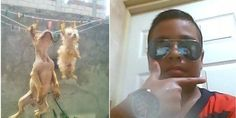 Juan Castillo Pérez leaves dogs to hang from washing line, posts photos online! Sign for tougher laws now!