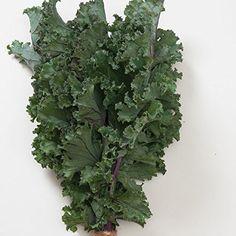 Johnsons Seeds Broccoli Calabrese Matsuri F1 Seed