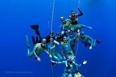Free diving Grand Cayman by courtneyplatt, via Flickr