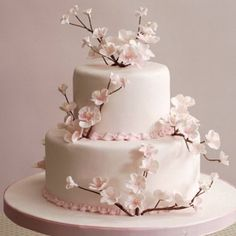 White Bakery - wedding and engagement - promise and engagement cakes - juno Best Picture For spring wedding cake buttercream For Your Taste You are looking fo Cherry Blossom Cake, Cherry Blossom Wedding, Wedding Cake Designs, Wedding Cakes, Buttercream Wedding Cake, Wedding Rituals, Engagement Cakes, Themed Cakes, Spring Wedding