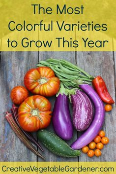 Growing unique & colorful varieties in your garden can really up the fun factor! Home Grown Vegetables, Colorful Vegetables, Organic Vegetables, Growing Vegetables, Fruits And Vegetables, Veggies, Indoor Vegetable Gardening, Vegetable Garden Tips, Organic Gardening