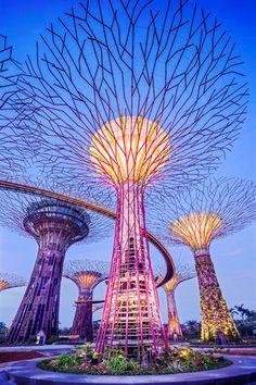 10 мест, которые нужно посетить в Сингапуре | Elle Decoration на Elle.ru