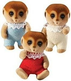 Spotter meerkat triplets