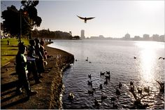 Love our Lake Merritt - Oakland is listed as #5 as one of the top 45 places to go in 2012.