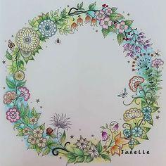 Coloring Books, Coloring Pages, Colouring, Shirley Eaton, Johanna Basford Secret Garden, Secret Garden Coloring Book, Colored Pencil Techniques, Flower Patterns, Color Inspiration