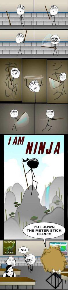 Epic Fail! Ninja!