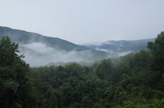 Elkmont Campgrounds, Great Smoky Mountains, TN