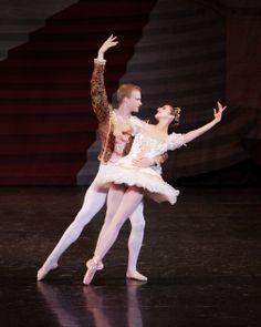 2012 Sugar Plum Fairy & Cavalier #LincolnMidwestBalletCompany #AdrianFry #AllisonDebona #BalletWest #PurpleSkyProductions Sugar Plum Fairy, Ballet Companies, Cavalier, Orchestra, Lincoln, Opera House, Ballet Skirt, Dance, Costumes