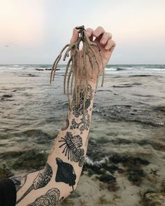 Healed sea sleeve with her salty muse and washed up coral on my - lionfish, spotted eagle ray, narwhal seen - would love to… Tatoo Art, Body Art Tattoos, New Tattoos, Cool Tattoos, Whale Shark Tattoo, Whale Tattoos, Shark Tooth Tattoo, Narwhal Tattoo, Hammerhead Shark Tattoo