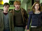one of my favorite parts of deathly hallows part one was the seven potters scene--such clever acting! daniel radcliffe talks about it here.