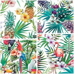 Set of 4 colorful vectors with tropical flowers and birds that you can use for patterns, illustrations, cards and other designs. Free for download.