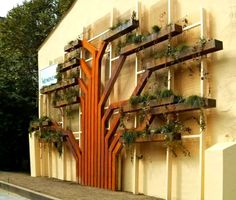 Here's a vertical garden to write home about...