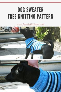 Dog Sweater Pattern | Free Knitting Patterns | Handy Little Me