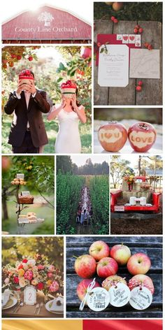 Apple Orchard Wedding, inspiration board by The Simplifiers | Austin