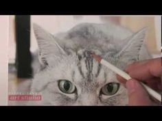 HOW TO DRAW A CAT: PART 1—THE APPROACH (Art Studio lesson 68 excerpt) - YouTube