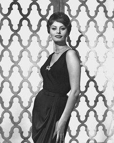 Sophia Loren by Wallace Seawell Sophia Loren Style, Loren Sofia, Sophia Loren Images, Old Hollywood Stars, Italian Actress, Handsome Actors, Celebs, Celebrities, Classic Beauty