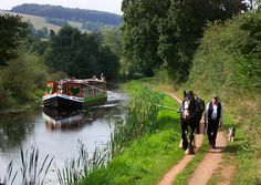 some canal boats are still horse-drawn.