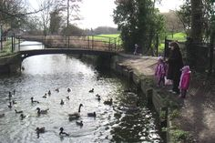 Town Park Enfield - walked many times across this bridge