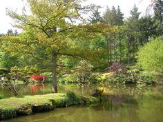 Jardin oriental Maulévrier France