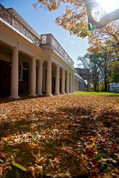 Fall colors on grounds at University of Virginia in Charlottesville, VA ~ UNESCO World Heritage Site.  Photo: Vironnevaeh via Flickr