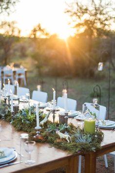 A unique African Bush Safari-Style Wedding set at a Lion Conservation Center. Safari Wedding, Lodge Wedding, Chic Wedding, Safari Party, Rustic Wedding Decorations, Centerpiece Decorations, Wedding Centerpieces, Banquet Decorations, Bush Wedding