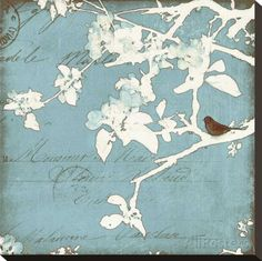 Song.Birds.04.of.08.-.Amy.Melious