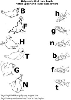 arctic animals matching upper and lower case letters worksheet#esl worksheet