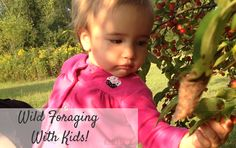 Foraging for Wild Edibles With Kids