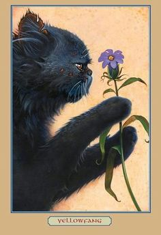 I LOVE Yellowfang. She is my favorite cat in warriors. I also LOVE this picture. To bad she dies :(